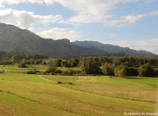 Ribadesella-rural